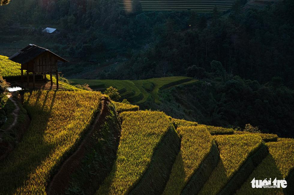 Đuổi theo mặt trời ngắm ruộng bậc thang đẹp như tranh vẽ - Ảnh 7.