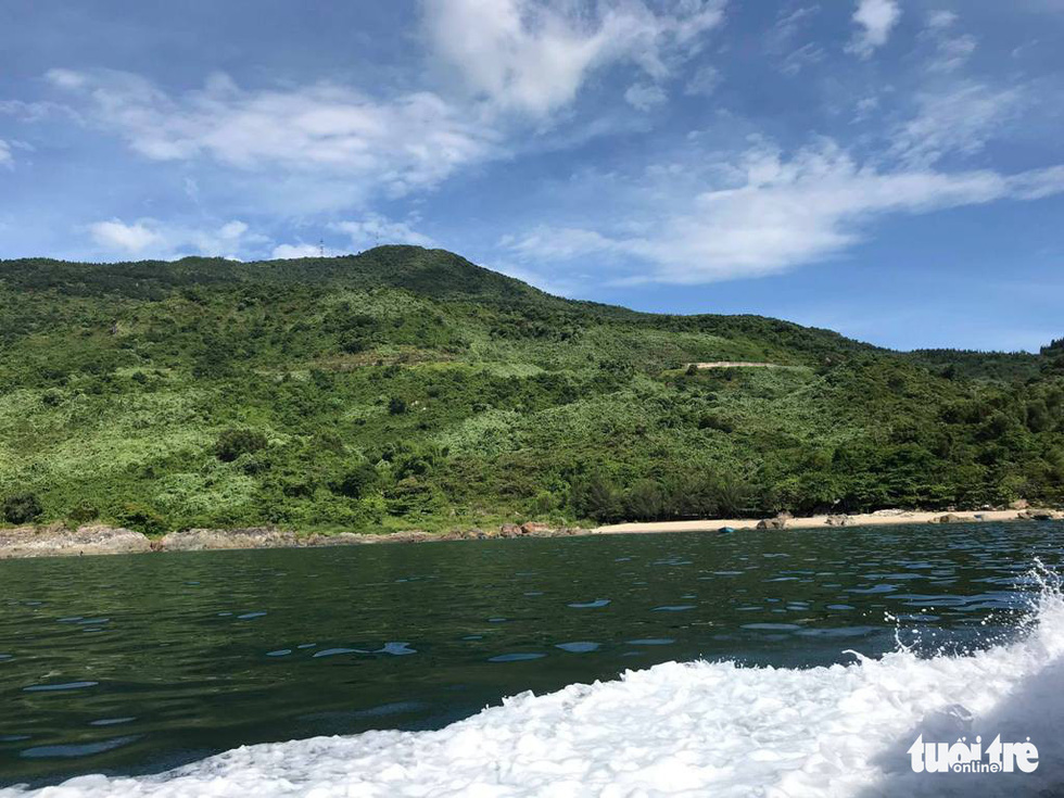 Sủng Cỏ thiên đường hoang sơ nơi cửa vịnh Đà Nẵng - Ảnh 12.