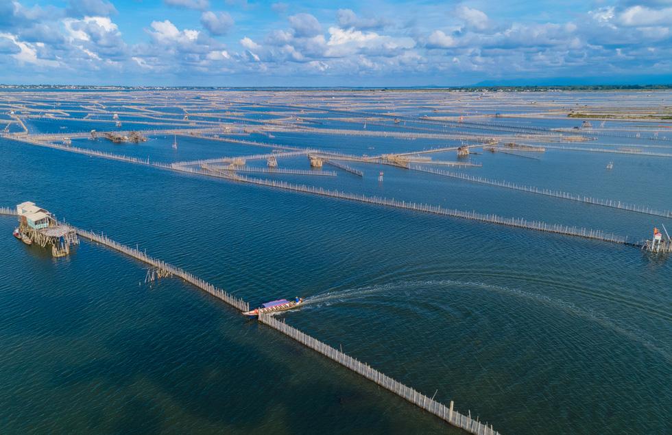Vẻ đẹp trù phú của vùng nước Tam Giang - Cầu Hai - Ảnh 4.
