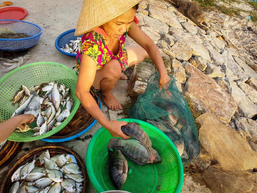 Vẻ đẹp trù phú của vùng nước Tam Giang - Cầu Hai - Ảnh 8.